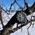 I na stromě byly hodinky Luminox 3001